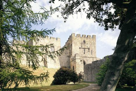 Prudhoe Castle by Ray Hutchinson